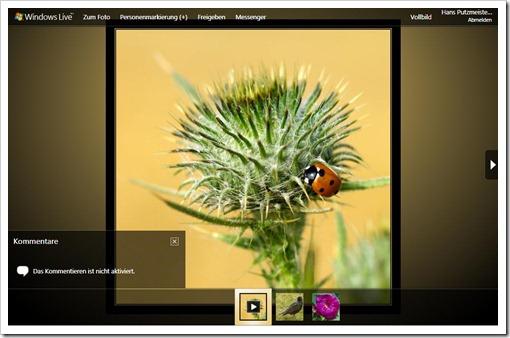 Windows Live Hotmail - Putzmeister's Ansicht der Galerie