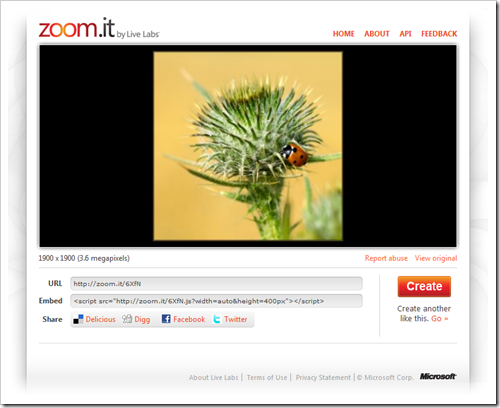 Code-Schnipsel und Kurz-URL wird von zoom.it bereitgestellt