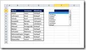 Excel 2010: Das Auswahlfenster in Zelle F2